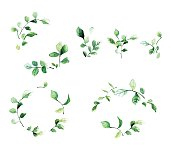 Decorative floral frames with green leaves and branches in watercolor style. Beautiful hand drawn elements for web pages, wedding invitations, save the date cards, greeting cards.