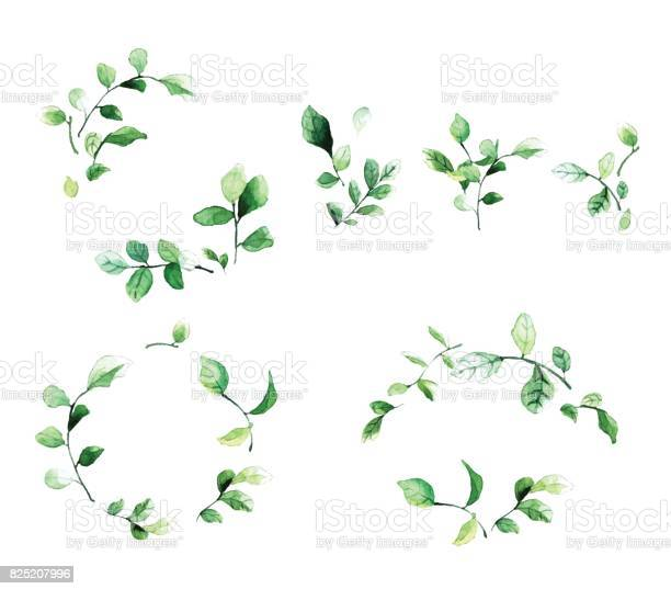 Elegant decorative floral frames with green leaves and branches in vector id825207996?b=1&k=6&m=825207996&s=612x612&h=lww8cm88jtmolx8l tgsrfpim6xggk7if6 ji3ibibk=