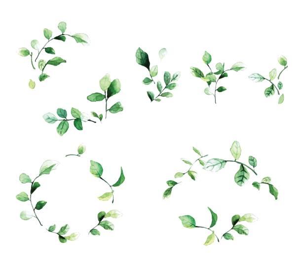 eleganten dekorativen floralen rahmen mit grünen blättern und zweigen im aquarell-stil. - hochzeitsblumen stock-grafiken, -clipart, -cartoons und -symbole