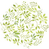 Elegant floral background with green leaves and branches