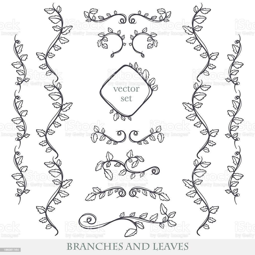 Elegant floral elements with branches and leaves. royalty-free stock vector art