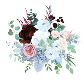 Elegant floral vector bouquet with burgundy red peony, dusty pink rose, blue and white flowers, eucalyptus, brunia, echeveria, mixed plants. Watercolor style wedding floral card. Isolated and editable