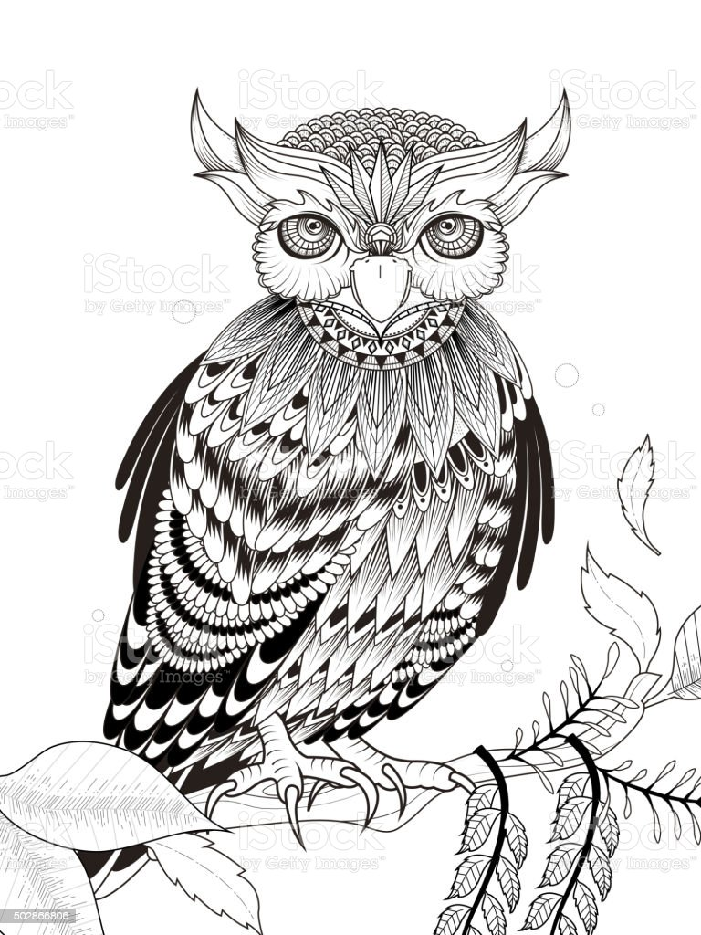 Elegant Owl Coloring Page Royalty Free Stock Vector Art Amp