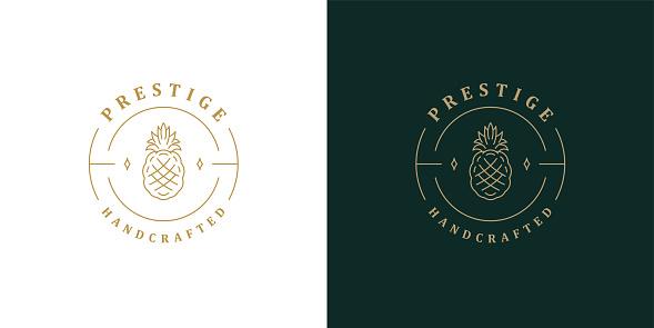 Elegant pineapple logo template linear vector illustration