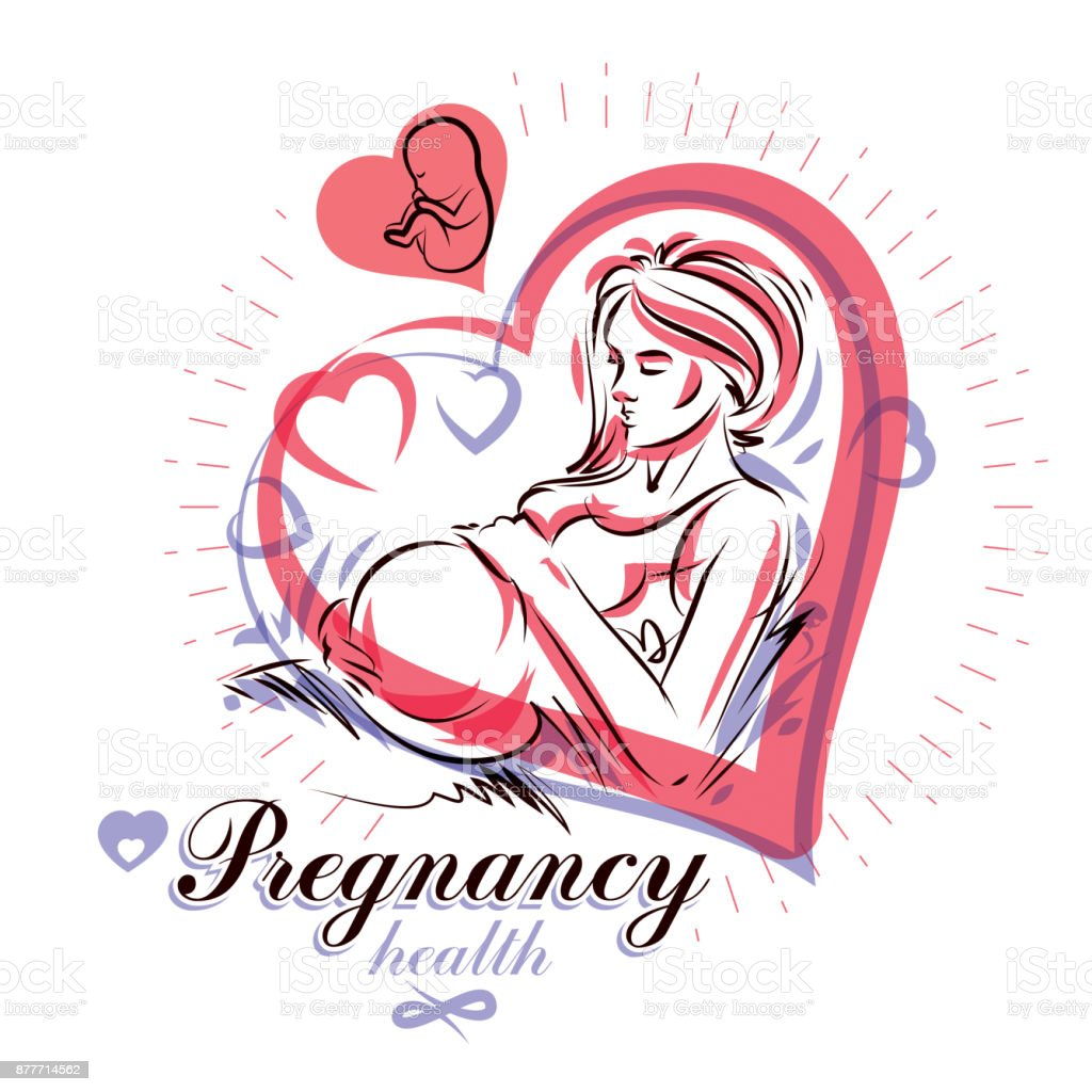 Elegant pregnant woman body silhouette drawing. Vector illustration of mother-to-be fondles her belly. Pregnancy and maternity popularization vector art illustration