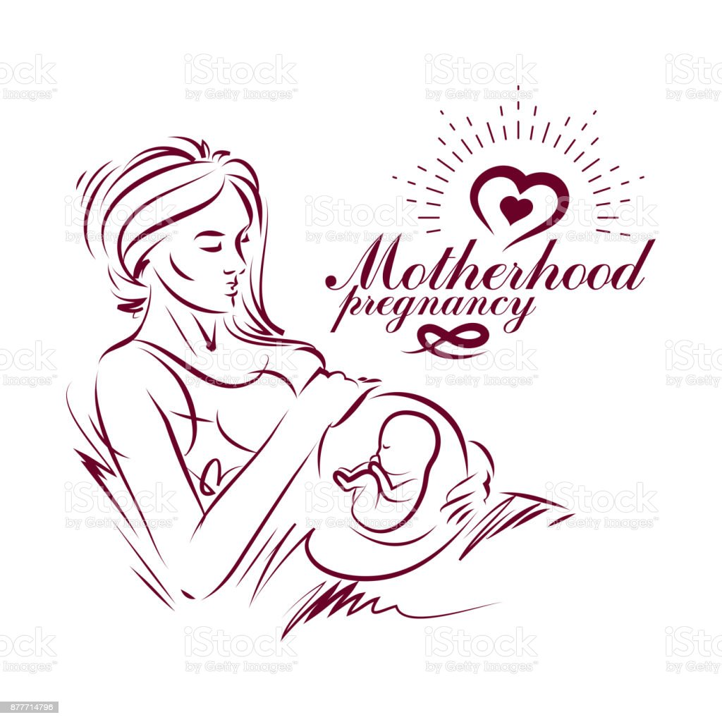 Elegant pregnant woman body silhouette drawing. Vector illustration of mother-to-be fondles her belly. Medical rehabilitation and childcare center marketing card vector art illustration