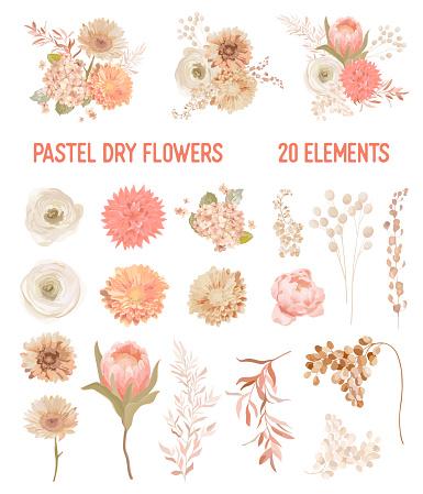 Elegant Vector Dry Flowers, Protea, Pale roses, Eucalyptus, Dried hydrangea, Dahlia, floral elements. Trendy winter, autumn wedding bouquets, vintage decoration. Pastel watercolor style isolated set
