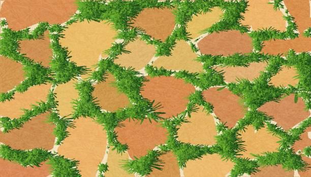 element für die landschaftsgestaltung, pflastersteine, muster der freimaurerei mit grünen rasen, gartenweg mit grün überwuchert. - steinpfade stock-grafiken, -clipart, -cartoons und -symbole