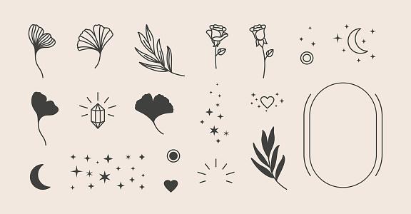 Elements for logo design - rose, Ginkgo Biloba Leaf, Stars, moon, Frame. Vector illustration in a minimal linear style