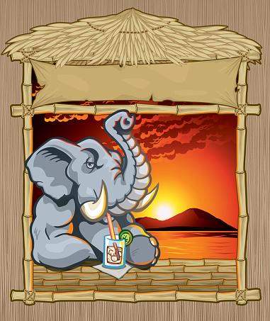 Elephant at Tropical Bar