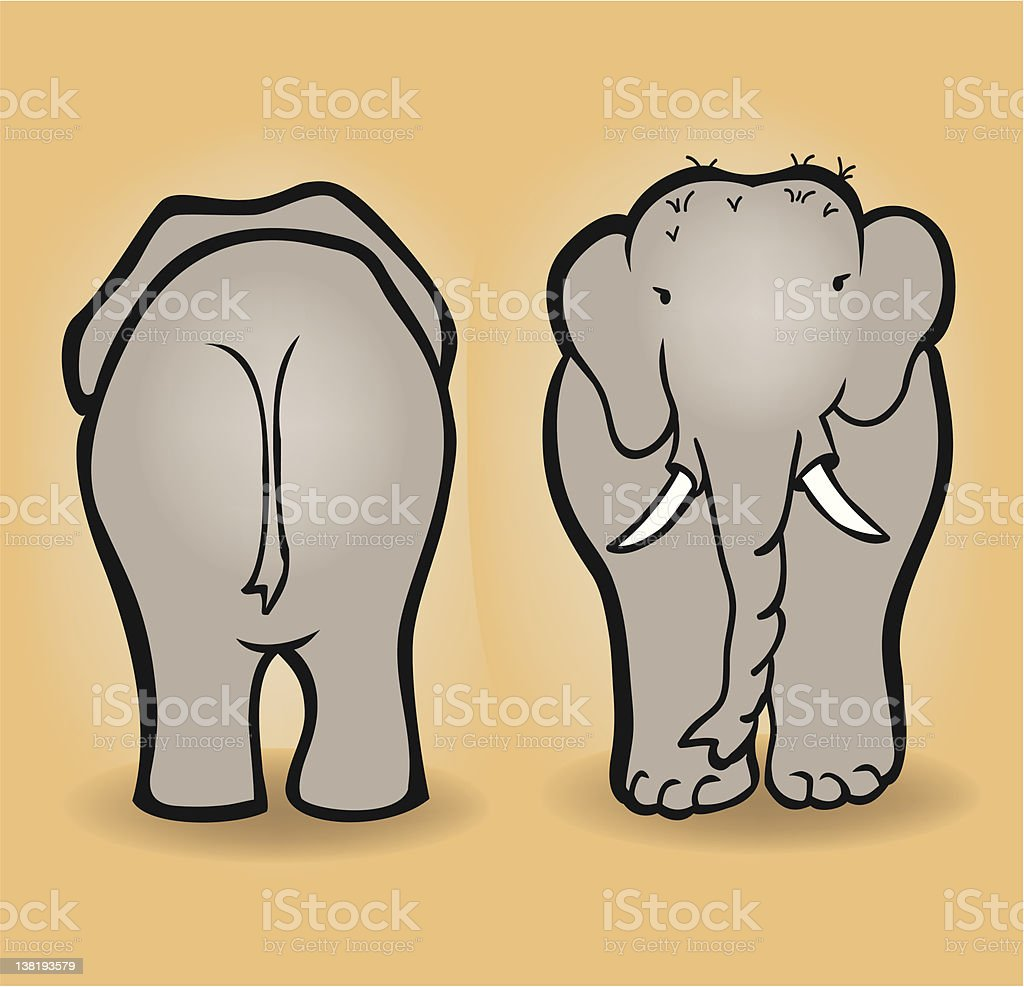Elephant front and backwards royalty-free stock vector art
