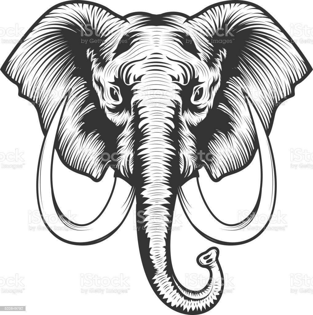 Elephant head illustration.