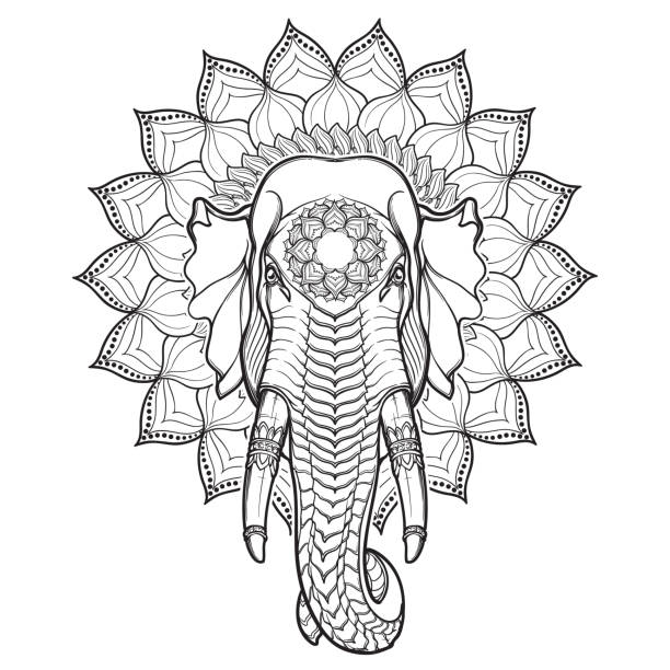 elephant head on lotus mandala. popular motiff in asian arts and crafts. intricate hand drawing isolated on white background. tattoo design. - elephant stock illustrations