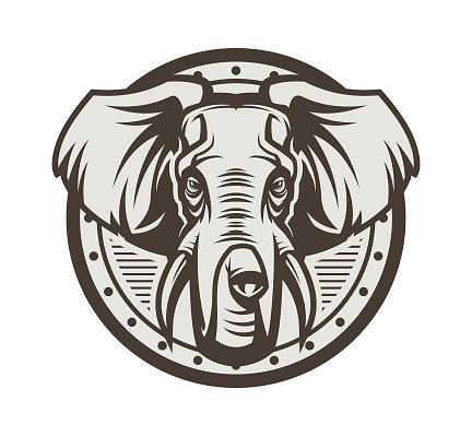 Elephant head on shield