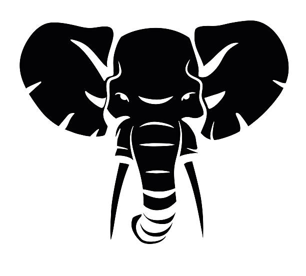 elephant head – Vektorgrafik