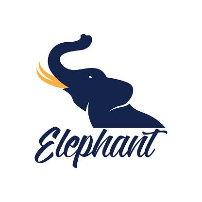 Elephant icon isolated on white background, vector illustration