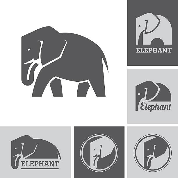 Elephant icons and symbols Set of elephant icons and symbols on white and dark backgrounds elephant stock illustrations