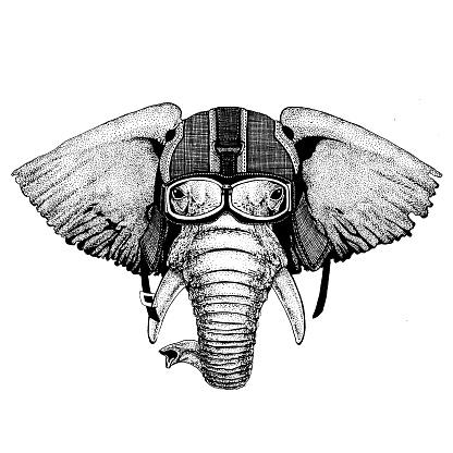 Elephant, indian or african elephant Hipster animal wearing motorycle helmet. Image for kindergarten children clothing, kids. T-shirt, tattoo, emblem, badge, logo, patch