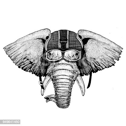 Animal wearing motorycle helmet. Image for kindergarten children clothing, kids. T-shirt, tattoo, emblem, badge, logo patches
