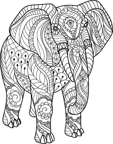 Elephant on white background.