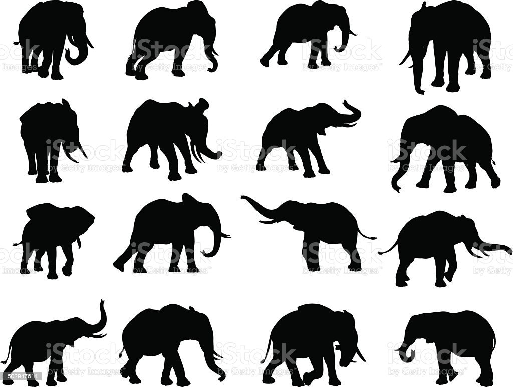 Elephant Silhouettes vector art illustration