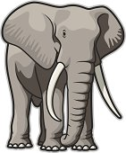 Illustration of a bull elephant. File is organized into layers and download includes: JPG, EPS, PDF formats.