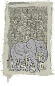 Elephant Walking in a Concrete Jungle