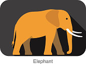 Elephant  walking side flat 3D icon design