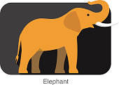 Elephant  walking side flat 3D icon design