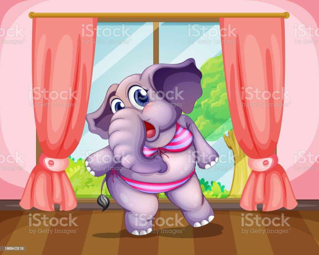 elephant wearing a swimwear royalty-free elephant wearing a swimwear stock vector art & more images of animal
