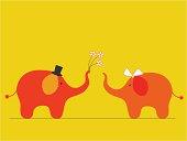 Elephants' wedding