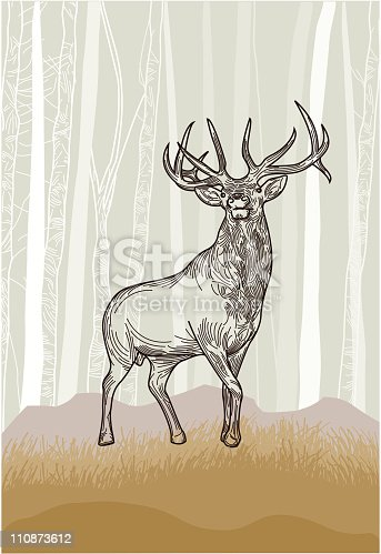 An elk standing steadily in the plains on a forest backdrop.