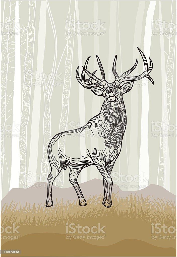 Elk in the Grasslands Forest vector art illustration