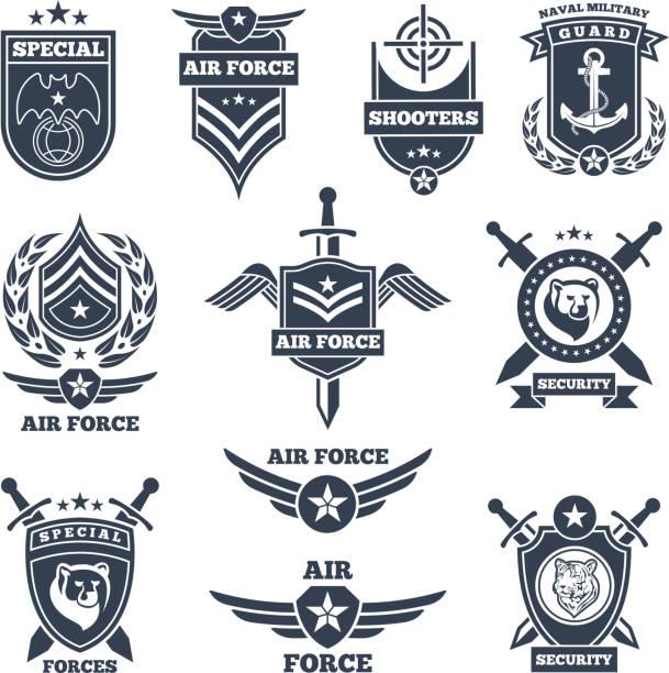 stockillustraties, clipart, cartoons en iconen met emblemen en badges voor lucht en krachten - patchwork