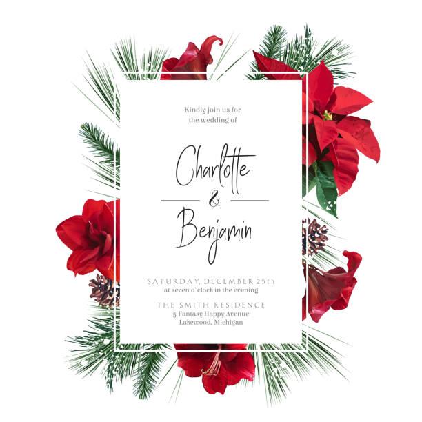 stockillustraties, clipart, cartoons en iconen met emerald kerstgroen, rode poinsettia, amaryllis, sparren, spar vector ontwerp frame - kerstster