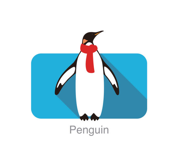 Emperor Penguin standing on the ground, swearing a scarf, Penguin seed series, vector Emperor Penguin standing on the ground, swearing a scarf, Penguin seed series, vector emperor penguin stock illustrations