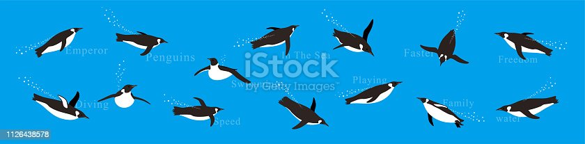 Emperor Penguins swimming in the sea with various postures.