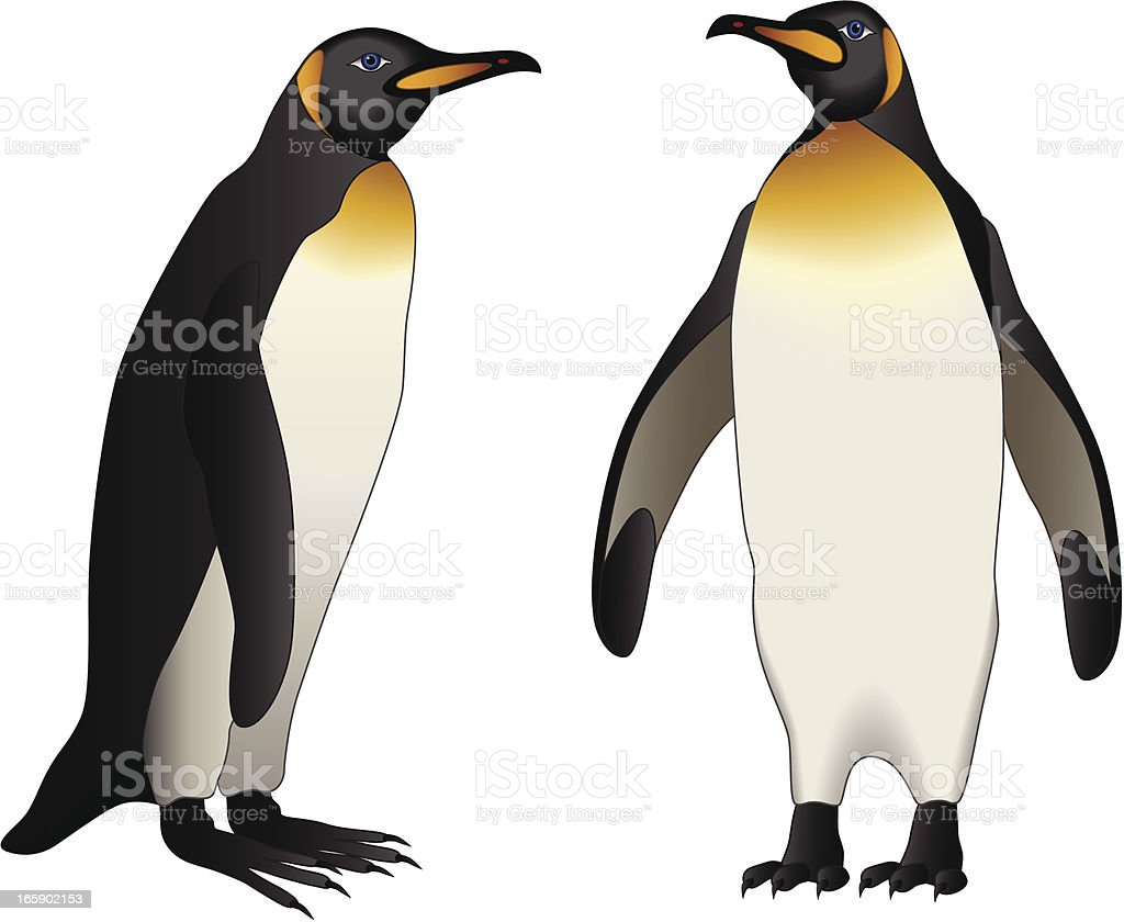 Emperor Penguins Stock Vector Art & More Images of Animal 165902153 ...