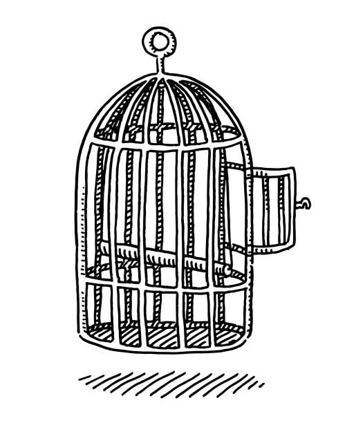 illustrations, cliparts, dessins animés et icônes de dessin de porte ouverte vide bird cage - dessin cage a oiseaux