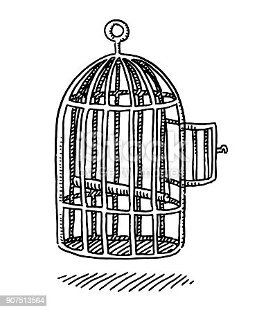 Empty Bird Cage Open Door Drawing Stock Vector Art & More