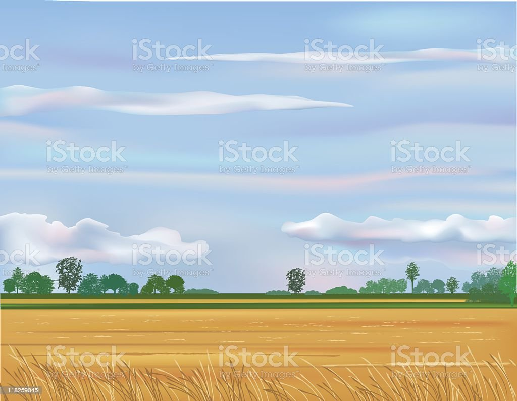 Empty Field and Blue Sky royalty-free stock vector art
