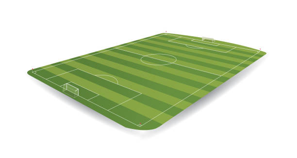 empty soccer field in perspective with 3d appearance on white background - alejomiranda stock illustrations