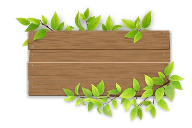 bildbanksillustrationer, clip art samt tecknat material och ikoner med tom träskylt med trädgren - wood sign isolated