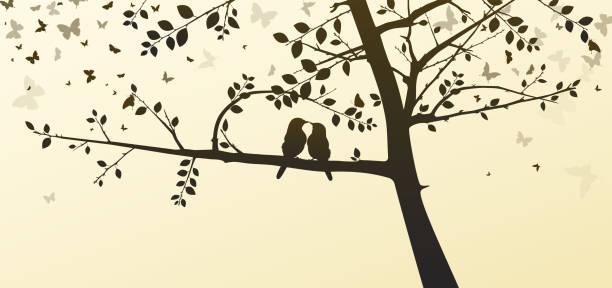illustrazioni stock, clip art, cartoni animati e icone di tendenza di uccelli innamorati seduti su un albero in un ambiente romantico - farfalla ramo