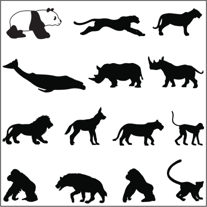 Endangered species silhouettes