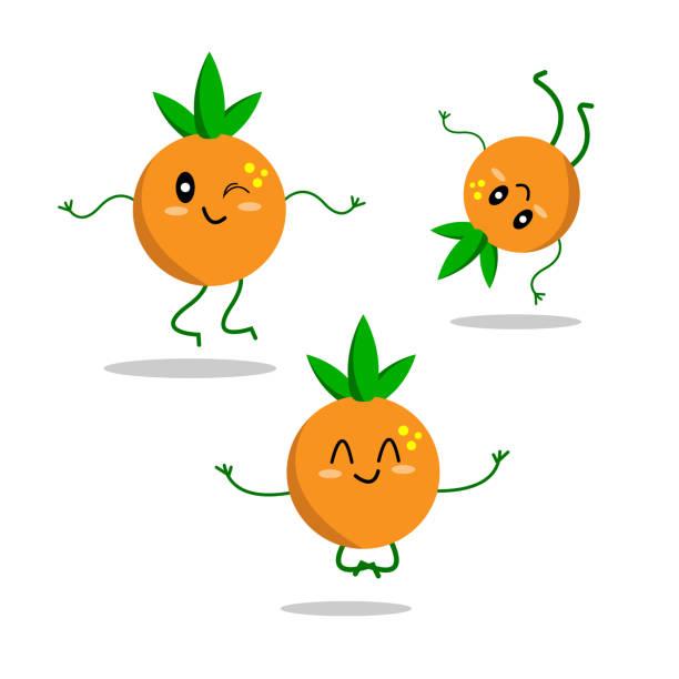 energetic fruit oranges in various poses vector art illustration
