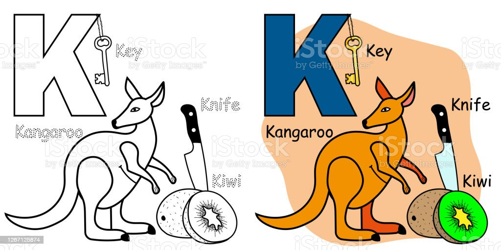 - English Alphabet Coloring Book Page For Children Letter K Is For Kangaroo  Kiwi Knife Key Vector Illustration Stock Illustration - Download Image Now  - IStock