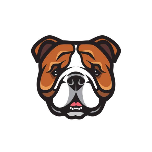 bildbanksillustrationer, clip art samt tecknat material och ikoner med engelsk bulldog ansikte-isolerad skisserat vektor illustration - bulldog