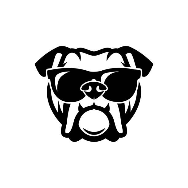 bildbanksillustrationer, clip art samt tecknat material och ikoner med engelsk bulldogg bär solglasögon - isolerade beskrivs vektorillustration - bulldog