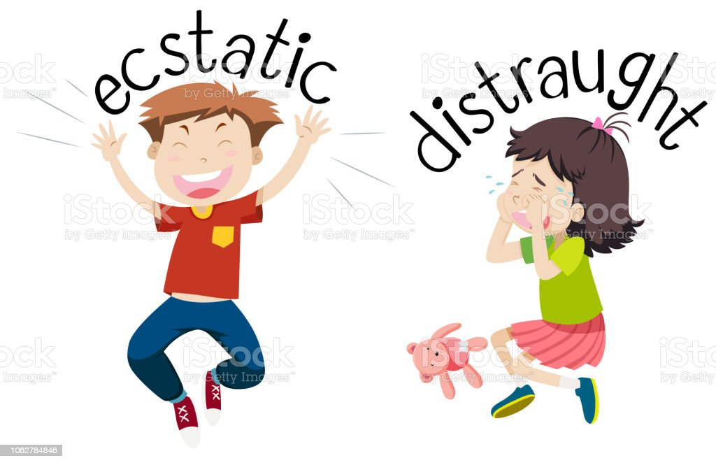 English opposite word of ecstatic and distraught vector art illustration